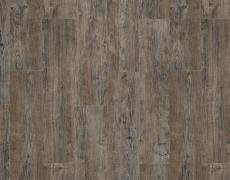 moduleo-transform-latin-pine-24868